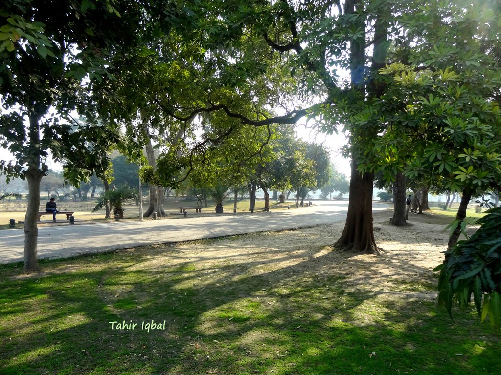 tracks of Bagh e Garden