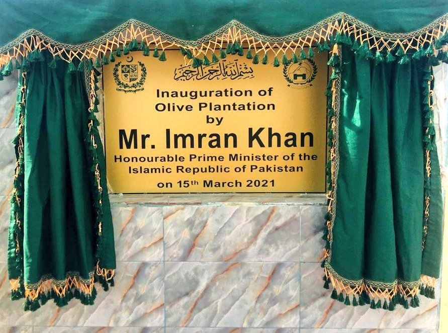 Inauguration board of olive plantation in Pakistan