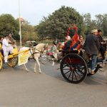 Exploring the Colours of Walled City Of Lahore on Tonga Ride