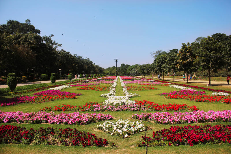 beautiful-flower-exhibition-lahore-race-course-park-pakistan-69807252 -  Locally Lahore