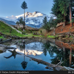 What You Must Know When Travelling to Fairy Meadows