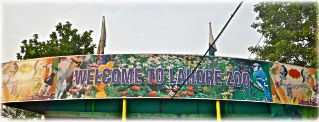 Lahore Zoo Mall Road Lahore
