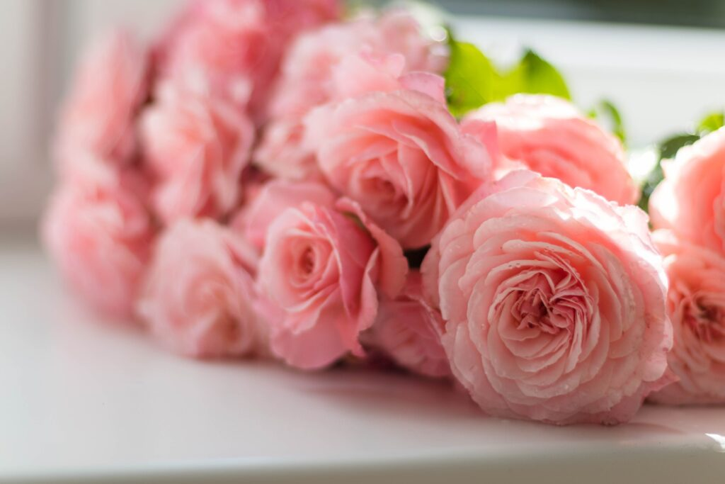 Flowers shops in lahore