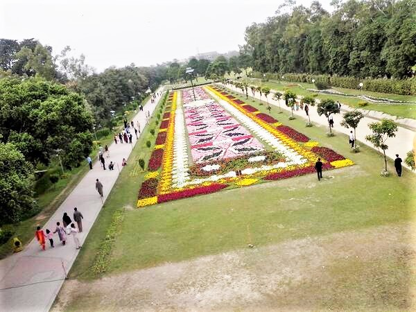 Flower beds in race course park